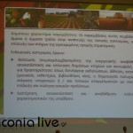 parousiasi CLLD (2)