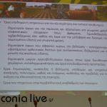 parousiasi CLLD (3)