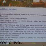 parousiasi CLLD (6)