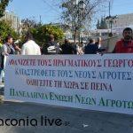 agrotiki sygkentrosi Syntagma (4)