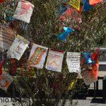 antipolemiko festival Sparti (25)